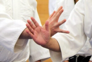 Beginners Aikido Lessons Renshinkai Sussex Haywards Heath