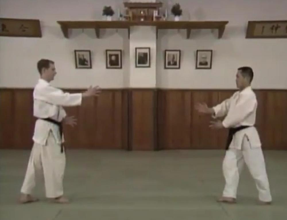 Kihon Dosa to Kanren Waza – 基本動作と関連技
