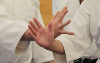 Aikido Lessons - Renshinkai Aikido Sussex, Haywards Heath